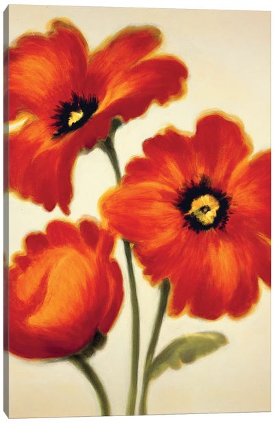 Orange Poppies Canvas Art Print