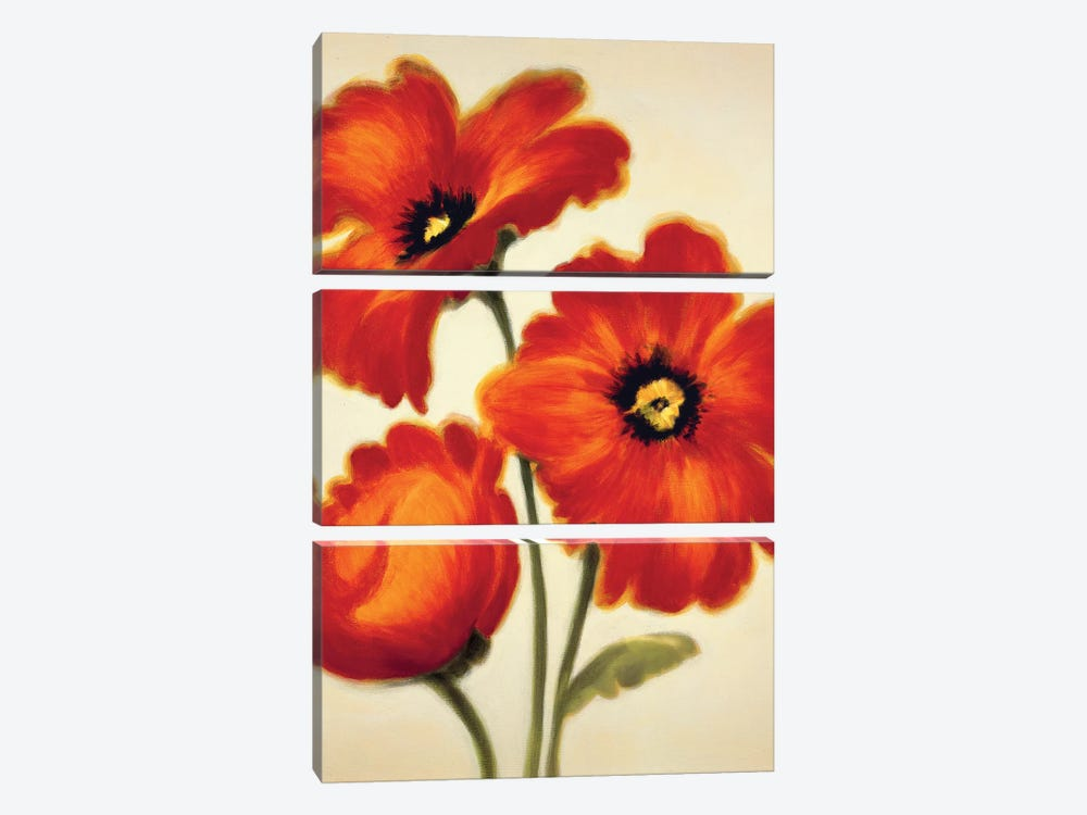 Orange Poppies by Paula Benson 3-piece Canvas Art Print