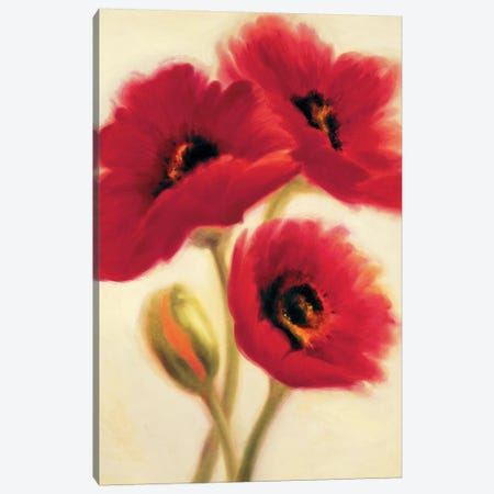 Red Poppies Canvas Print #PAB2} by Paula Benson Canvas Print