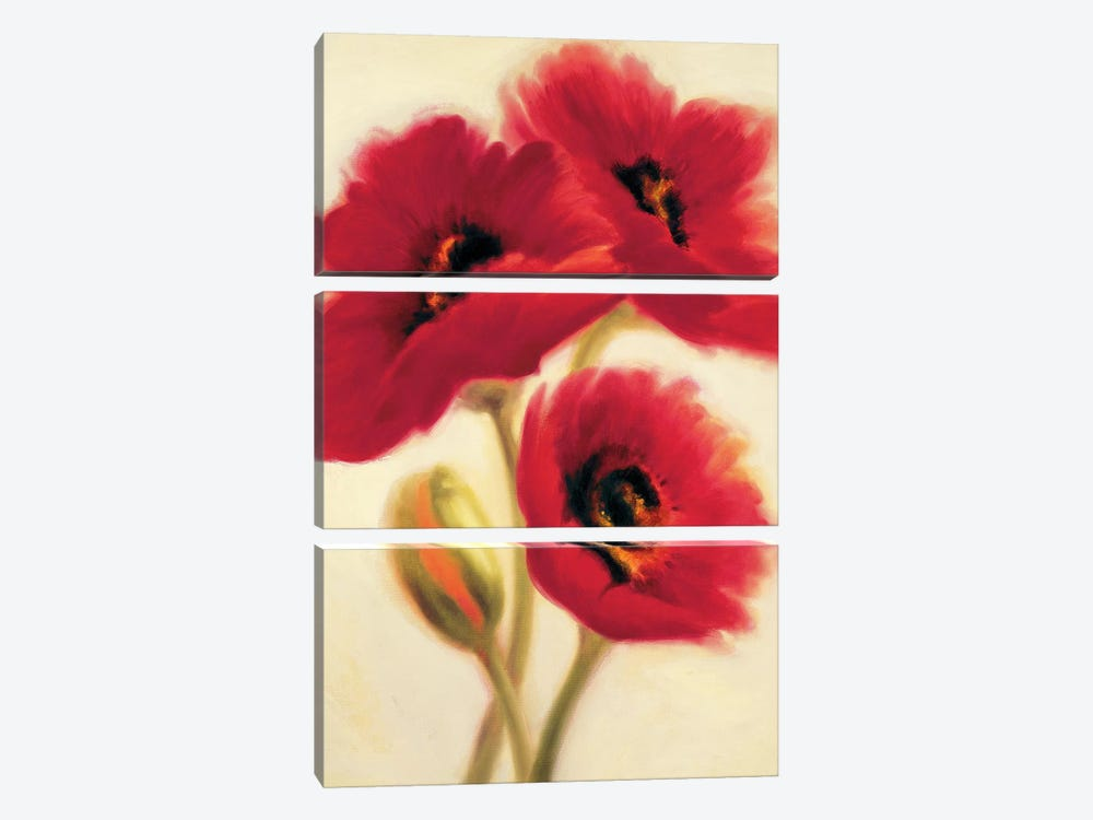 Red Poppies by Paula Benson 3-piece Canvas Artwork