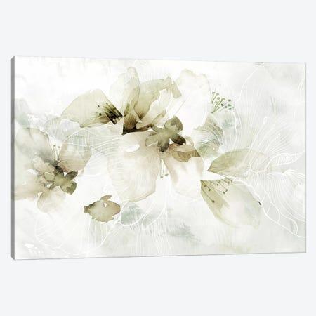Golden Cherry Blossoms  Canvas Print #PAC4} by Pamela Collabera Art Print