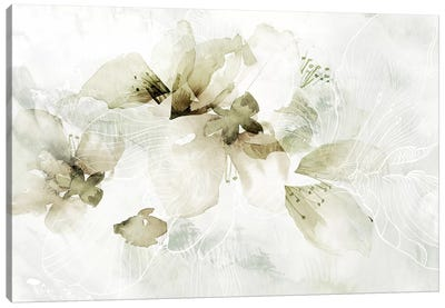 Golden Cherry Blossoms  Canvas Art Print