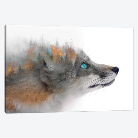 Flaming Fox Canvas Print #PAH102} by Paul Haag Canvas Wall Art
