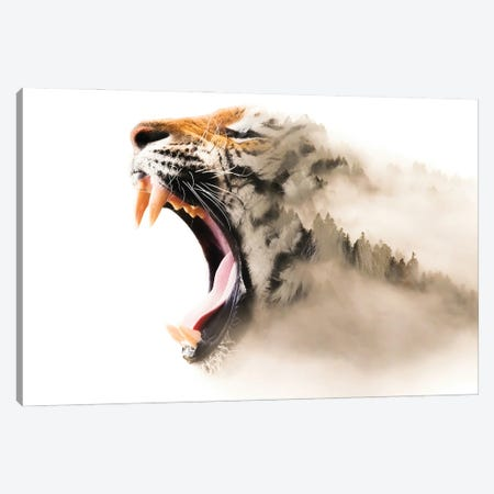 Tiger Mist Canvas Print #PAH103} by Paul Haag Canvas Wall Art