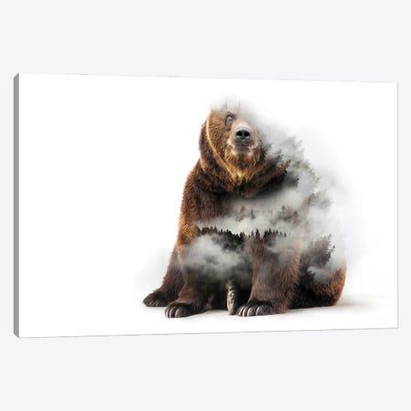 Nature Bear Canvas Print #PAH113} by Paul Haag Canvas Print