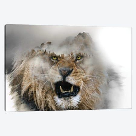 Golden Lion Canvas Print #PAH116} by Paul Haag Canvas Artwork