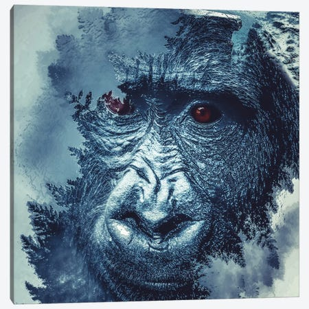 Gorilla Canvas Print #PAH15} by Paul Haag Canvas Wall Art