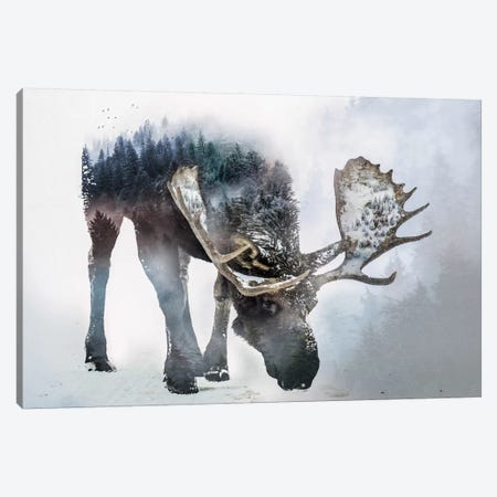Nature Moose Canvas Print #PAH20} by Paul Haag Canvas Artwork