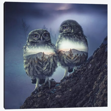 Owl Twins Canvas Print #PAH21} by Paul Haag Canvas Artwork