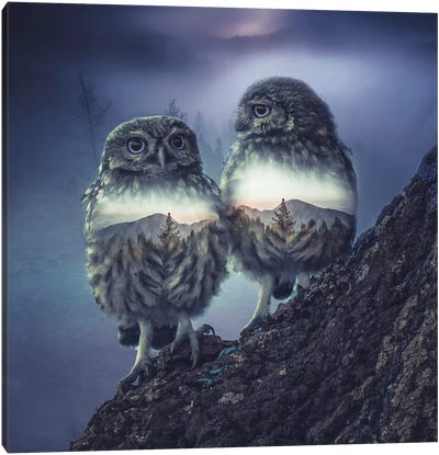Owl Twins Canvas Art Print