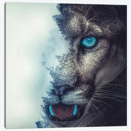 Puma Canvas Print #PAH23} by Paul Haag Canvas Art