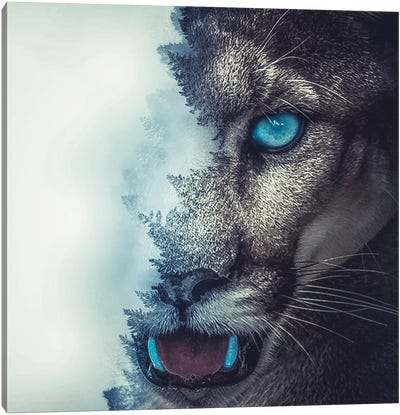 Puma Canvas Art Print