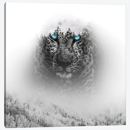 Tiger I Canvas Print #PAH27} by Paul Haag Canvas Print