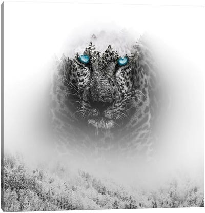 Tiger I Canvas Art Print