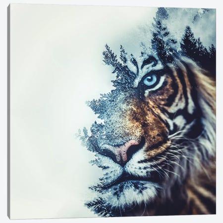 Tiger II Canvas Print #PAH28} by Paul Haag Canvas Artwork