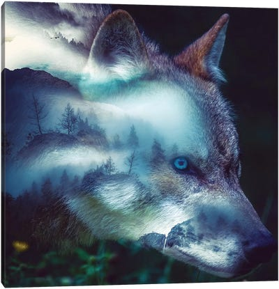 Forest Wolf Canvas Art Print
