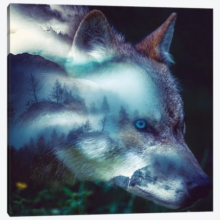 Forest Wolf Canvas Print #PAH34} by Paul Haag Canvas Artwork