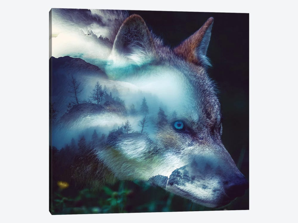 Forest Wolf by Paul Haag 1-piece Canvas Wall Art