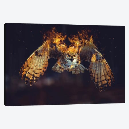 Owl On Fire Canvas Print #PAH39} by Paul Haag Art Print