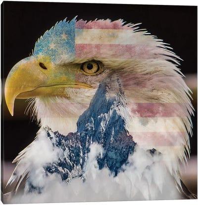 Eagle I Canvas Art Print