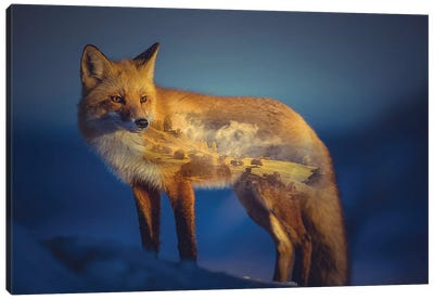 Foxscape Canvas Art Print