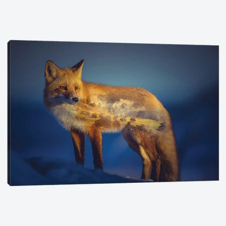 Foxscape Canvas Print #PAH44} by Paul Haag Canvas Art Print