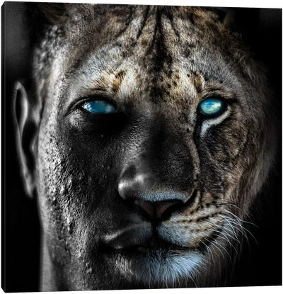 Lion Man Canvas Art Print