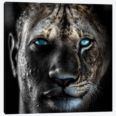 Lion Man Canvas Print #PAH45} by Paul Haag Canvas Art Print