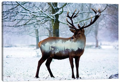 Winter Deer I Canvas Art Print