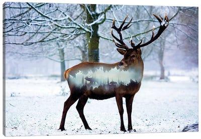Winter Deer I Canvas Art Print