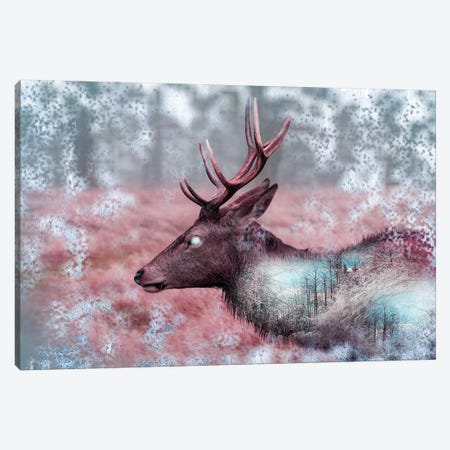 Winter Elk Canvas Print #PAH50} by Paul Haag Canvas Print