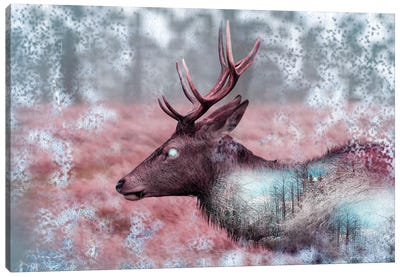 Winter Elk Canvas Art Print