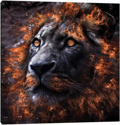Alpha Canvas Art Print