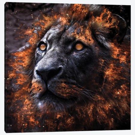 Alpha Canvas Print #PAH52} by Paul Haag Canvas Print