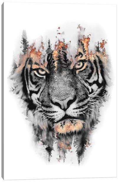 Burning Tiger Canvas Art Print
