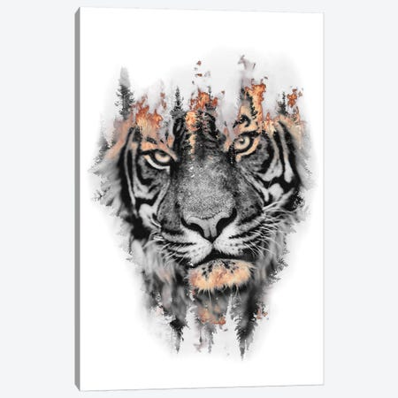 Burning Tiger Canvas Print #PAH53} by Paul Haag Art Print