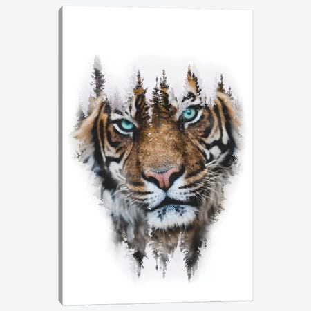 Whiteout Tiger Canvas Print #PAH59} by Paul Haag Canvas Art Print