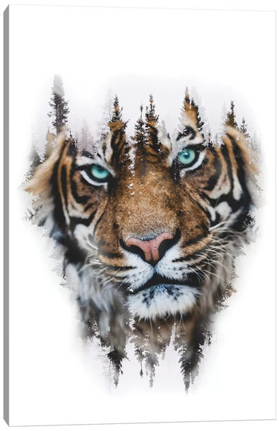 Whiteout Tiger Canvas Art Print