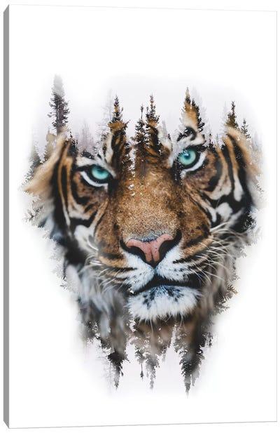 Whiteout Tiger Canvas Art Print