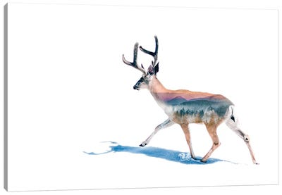 Winter Deer Canvas Art Print
