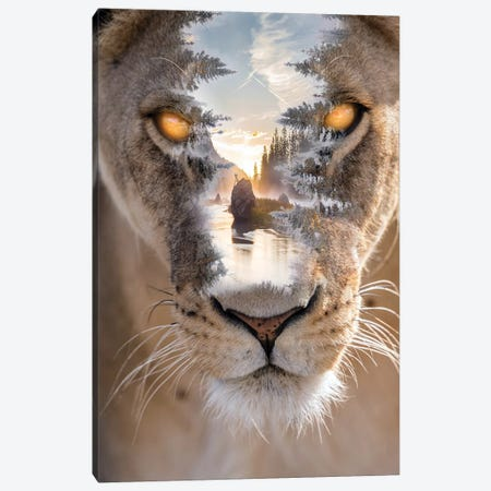Wild Outdoors II Canvas Print #PAH66} by Paul Haag Canvas Print