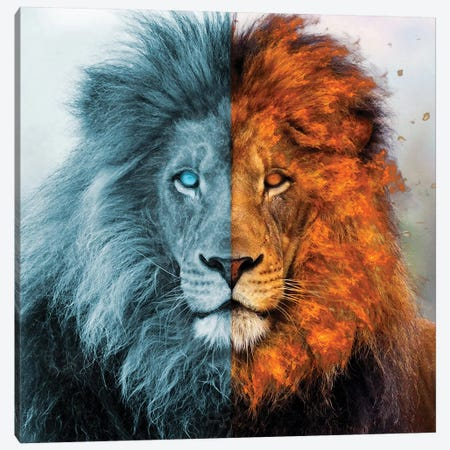 Aslan Canvas Print #PAH69} by Paul Haag Canvas Wall Art