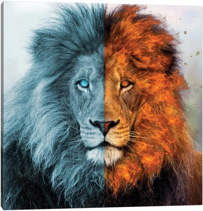 Aslan Canvas Art Print