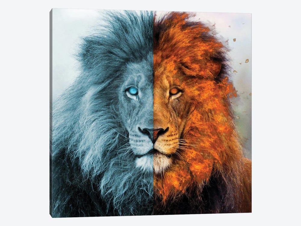 Aslan by Paul Haag 1-piece Canvas Artwork