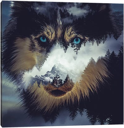Dog Canvas Art Print
