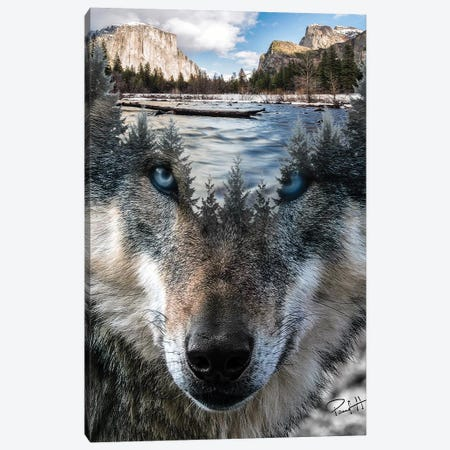 Wolf Canvas Print #PAH79} by Paul Haag Art Print