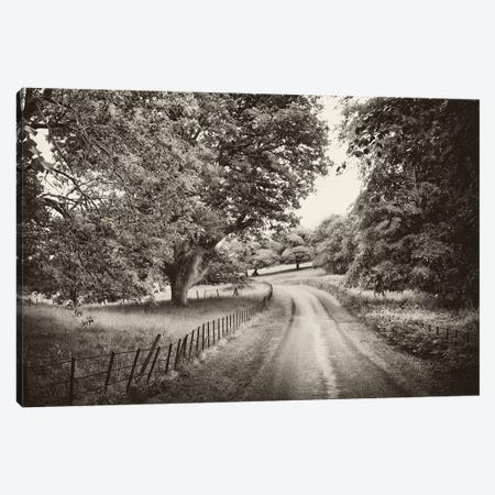 Country Roads Canvas Print #PAL1} by Janel Pahl Canvas Print