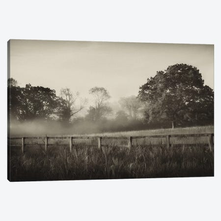 Foggy Day Canvas Print #PAL2} by Janel Pahl Art Print