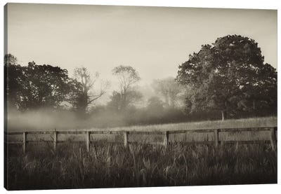 Foggy Day Canvas Art Print