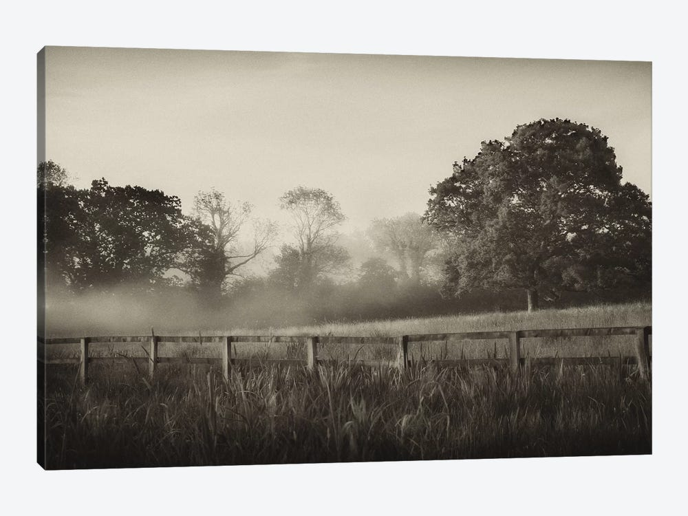 Foggy Day by Janel Pahl 1-piece Canvas Artwork